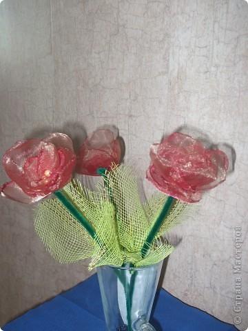 Мои тюльпанчики сделаны на одном дыхании. Увидела цветущие тюльпаны и в голове сразу родились хорошие мысли Вспомнила про органзу, а там уже все пошло как по маслу. фото 2