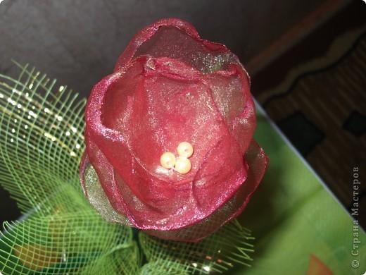 Мои тюльпанчики сделаны на одном дыхании. Увидела цветущие тюльпаны и в голове сразу родились хорошие мысли Вспомнила про органзу, а там уже все пошло как по маслу. фото 3