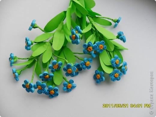 Долго ждала, когда же распустятся мои самые любимые весенние цветочки- незабудки. Дождалась! Успела сделать и даже в последний день дополнила букетик еще двумя веточками. фото 2