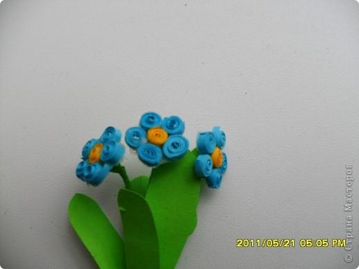 Долго ждала, когда же распустятся мои самые любимые весенние цветочки- незабудки. Дождалась! Успела сделать и даже в последний день дополнила букетик еще двумя веточками. фото 3