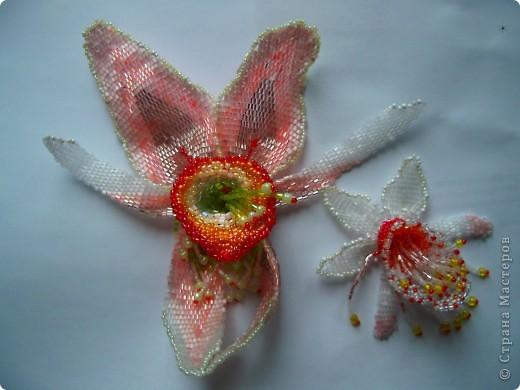 """Колье """"Орхидеи"""" На его создание меня вдохновили удивительные цветы орхидей. фото 3"""