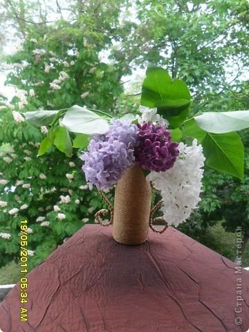 Эта сирень цветет у нас дома. фото 2