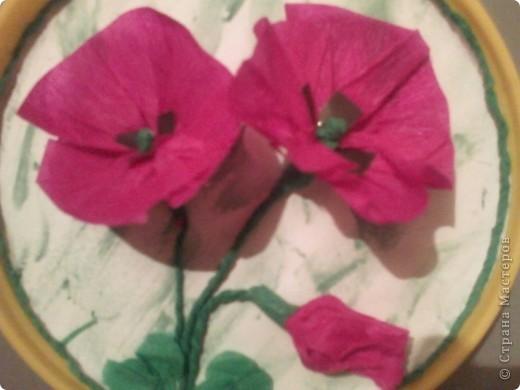 Мак- цветок с мужским именем, но нежный как сама весна!!! фото 2
