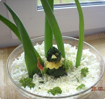 Девчонки и мальчишки! А так же их родители! Весеннего салатика отведать, не хотите ли? Давно мы с попугаями не угощали вас… Салат «Весна на Севере» покажем мы сейчас! Ну, а дальше в прозе…  фото 9