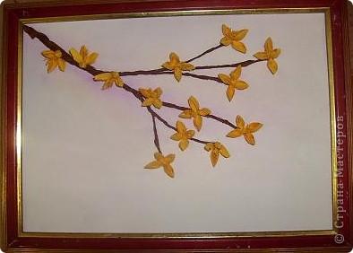 веточка форзиции у меня цветет, говорит как будто, что весна идет... веточка форзиции, солнышки твои радуют прохожих, словно огоньки....  фото 1