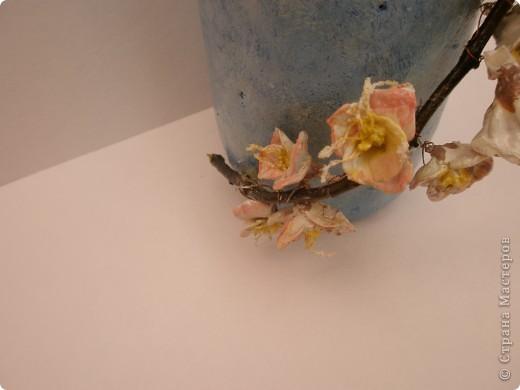 Яблони в цвету фото 7