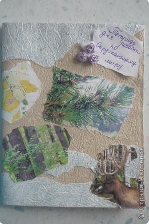 Для работы использовали обои и распечатанные на принтере фотографии природы. Эти фото мы делали сами этим летом. Для украшения использовали розочки в технике квиллинг. фото 1
