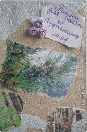 Для работы использовали обои и распечатанные на принтере фотографии природы. Эти фото мы делали сами этим летом. Для украшения использовали розочки в технике квиллинг. фото 2