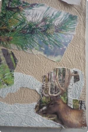 Для работы использовали обои и распечатанные на принтере фотографии природы. Эти фото мы делали сами этим летом. Для украшения использовали розочки в технике квиллинг. фото 3