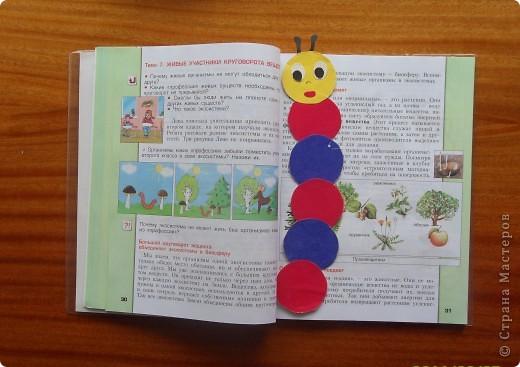 Закладка-гусеничка. фото 2