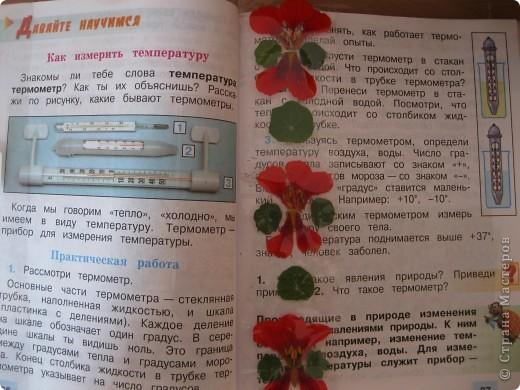 """Закладка к учебнику """"Окружающий мир"""" фото 1"""