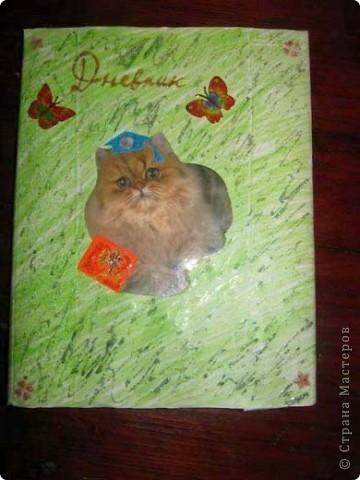 Обложка для дневника. фото 1