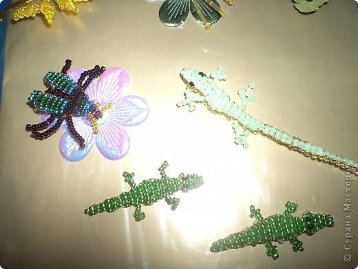 Я долго думала какую обложку мне сделать. И решила поскольку я люблю такой предмет, как окружающий мир сплести из бисера различных насекомых, цветов. Сделала ёжика.  Крокодилов и ящерку я тоже сплела из бисера.  фото 3