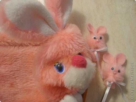 Кролик и К фото 2