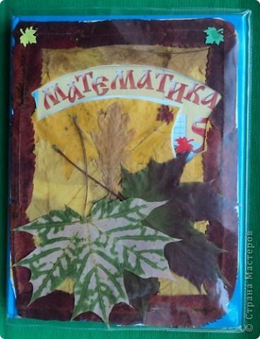 Осенняя обложка для учебника математики. фото 1