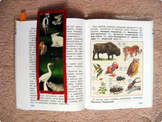 Мои закладки. фото 3