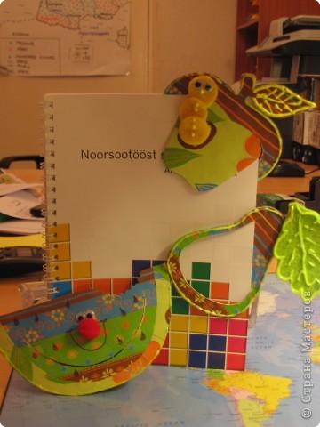 Уникальность этих закладок состоит в том, что они функциональны и просты в использовании .  фото 2