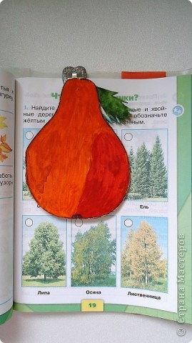 """Закладка - книжка """"Груша"""" для учебника """"Окружающий мир"""". фото 1"""