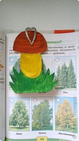 """Закладка - книжка """"Груша"""" для учебника """"Окружающий мир"""". фото 2"""