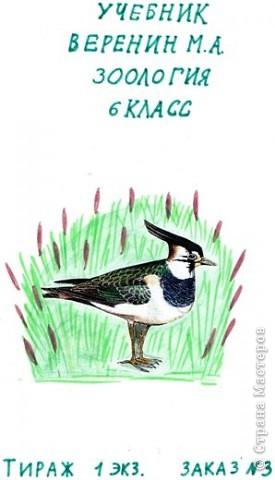 обложка для учебника по зоологии (вид спереди) фото 2