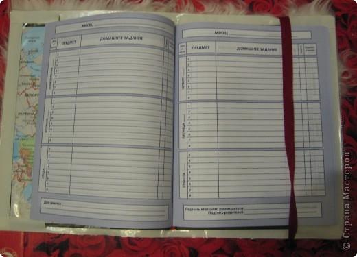 Пушистая меховая обложка - в таком дневнике могут быть только отличные оценки! фото 3