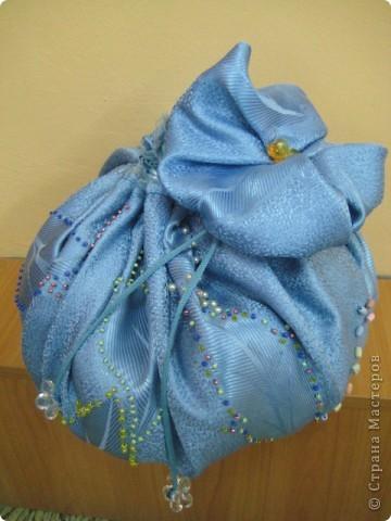 Модная сумочка для обуви. фото 1