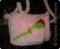 Портфель для девочек фото 1