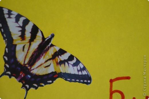 Обложка к учебнику биологии фото 4
