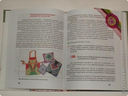 Закладка делается быстро из красивой упаковочной бумаги, напоминающей аппликацию на ткани. Делается из полоски сложенной в 4 слоя бумаги. Декорирована цветком-розеткой. Такую закладку легко сделать с ученицами. фото 11