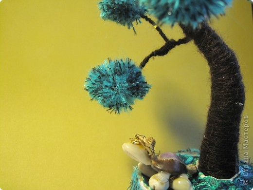 Помпонное  дерево и черепашка-мыслитель.  фото 1