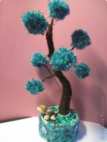Помпонное  дерево и черепашка-мыслитель.  фото 4
