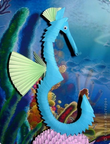 Очень красивый подводный мир фото 3
