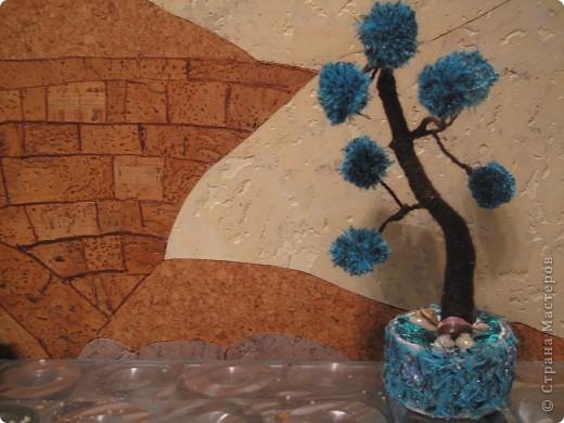 Помпонное  дерево и черепашка-мыслитель.  фото 3