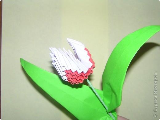 Моя поделка-тюльпан фото 4