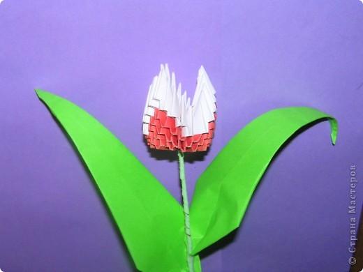 Моя поделка-тюльпан фото 1