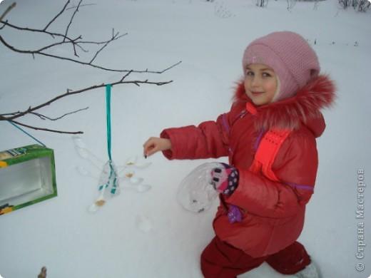 Мы решили сделать оригинальные кормушки для небольших по величине птиц: синиц, снегирей и воробьев и разместить их в нашей птичьей столовой на участке детского сада.  фото 8