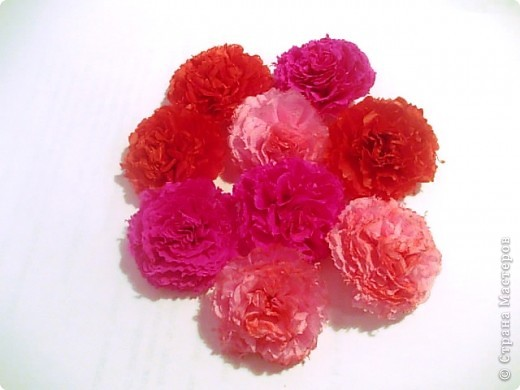 Мой розовый сад фото 4