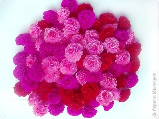 Мой розовый сад фото 5