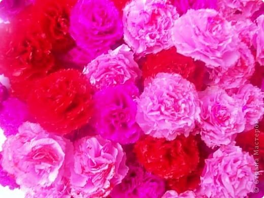 Мой розовый сад фото 6