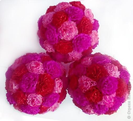 Мой розовый сад фото 11