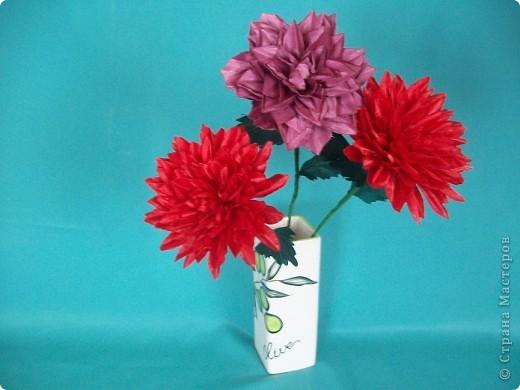 Говорят, что цветок Георгина приносит удачу и счастье. Попробую свою удачу! фото 1