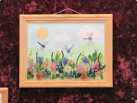 Как хорошо солнечным летним днём погулять по лесной полянке, полюбоваться растущими там цветами, вдохнуть их аромат, послушать как звенят прозрачными крылышками веселые стрекозы.  фото 4