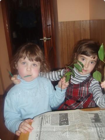 день зеленых насаждений фото 6