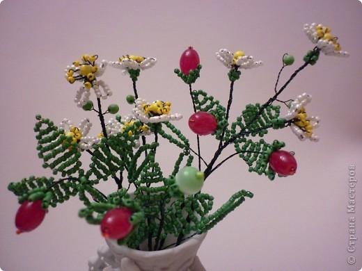 В мае - июне на прогретых солнцем лесных опушках и вырубках, на полянах и пригорках среди тройных зеленых листочков распускаются белые цветочки с пятью лепестками. Через месяц - полтора они превратятся в душистые, сладкие красные ягоды земляники. фото 1