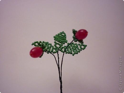 В мае - июне на прогретых солнцем лесных опушках и вырубках, на полянах и пригорках среди тройных зеленых листочков распускаются белые цветочки с пятью лепестками. Через месяц - полтора они превратятся в душистые, сладкие красные ягоды земляники. фото 4