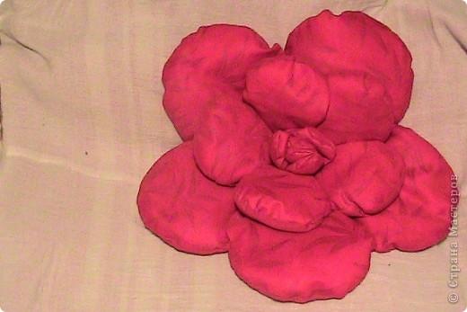 В Болгарии роза в особом почете. В долинах южнее горы Стара планина с давних времен выращивали масличную розу, из которой делали розовое масло, известное далеко за пределами Болгарии. Именно поэтому роза является одним из главных символов страны.  фото 1