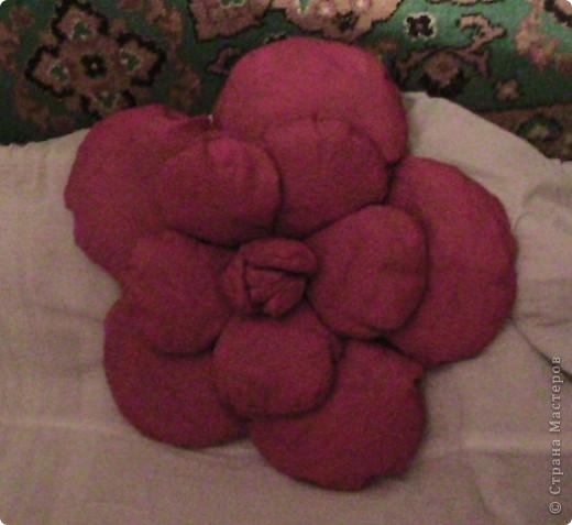 В Болгарии роза в особом почете. В долинах южнее горы Стара планина с давних времен выращивали масличную розу, из которой делали розовое масло, известное далеко за пределами Болгарии. Именно поэтому роза является одним из главных символов страны.  фото 2