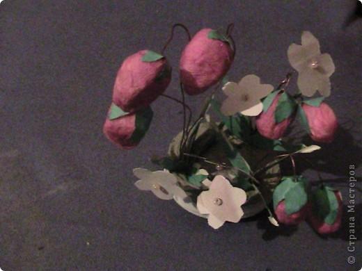Земляни́ка садо́вая, земляника анана́сная (Fragária ×ananássa) — многолетнее травянистое растение рода Земляника семейства Розовые. Часто это растение ошибочно называют клубникой  фото 4