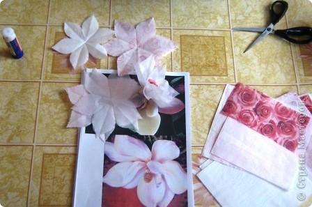 Выпал день 5 апреля. День магнолии. Это моя первая попытка сделать веер, он с магнолиями, надеюсь, цветы похожи. фото 2
