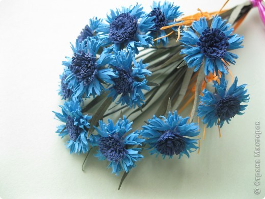 В одной из древнеримских легенд говорится, что цветок этот получил свое название в честь синеглазого юноши по имени Цианус, который был поражен его красотой, собирал эти синие цветы и плел из них гирлянды и венки.  фото 2